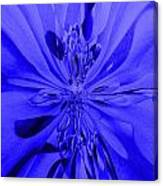 Values In Blue Canvas Print