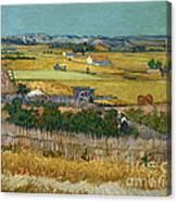 Van Gogh Wheatfield 1888 Canvas Print