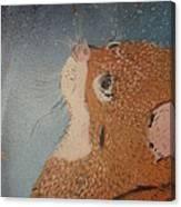 Van Goghs Cat Canvas Print