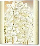 Vanilla Icing Canvas Print