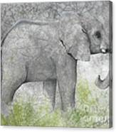 Vanishing Thunder Series-baby Elephant II  Canvas Print