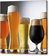 Variety Of Beer Glasses Canvas Print