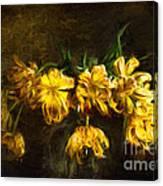 Vase Of Yellow Tulips Canvas Print
