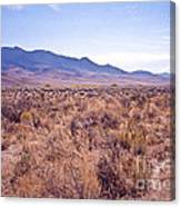 Vast Desolate And Silent - Lyon Nevada Canvas Print