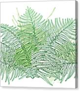 Vector Drawing Of Outline Fossil Forest Canvas Print