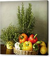Vegetables And Aromatic Herbs In The Kitchen Canvas Print
