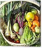 Veggie Delight Canvas Print