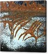 Veins To Clean  Canvas Print