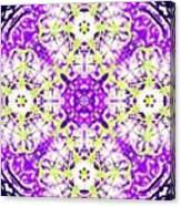 Velvet Blanket Canvas Print