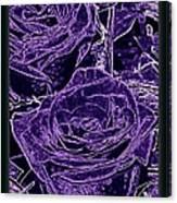 Velvet Sterling  Canvas Print