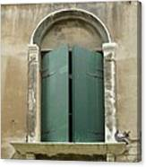 Venice Green Shutters With Birds Canvas Print