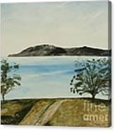 Ventura's Two Trees With Santa Cruz  Canvas Print