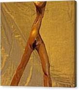 Venus Of Cyclops Canvas Print