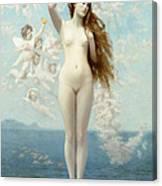 Venus Rising The Star Canvas Print