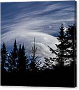 Vermont Tree Silhouette Clouds Cloudscape Canvas Print