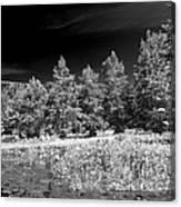 Vernon Lake Five Canvas Print