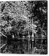 Vernon Lake Four Canvas Print