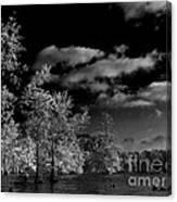 Vernon Lake Three Canvas Print