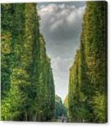 Versailles Promenade Canvas Print