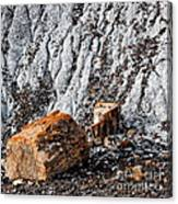 Very Old Logs Canvas Print
