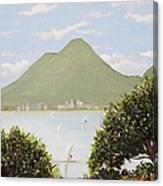 Vesuvius And Umbrella Pine Tree Canvas Print