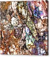 Vibra 1 Canvas Print