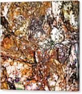 Vibra 2 Canvas Print