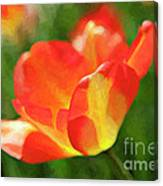 Vibrant Colorful Tulips Canvas Print