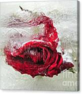 Victim Of Anti-aging Canvas Print