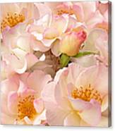 Victorian Pink Roses Bouquet Canvas Print
