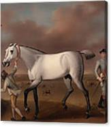 Victorious At Newmarket Canvas Print