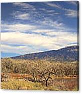View Across The Rio Grande River Huge Panorama Canvas Print