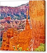 View At Beginning Of Navajo Trail In Bryce Canyon National Park-utah Canvas Print