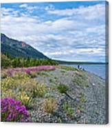 View Four Kluane Lake From Cottonwood Campground Near Destruction Bay-yk Canvas Print