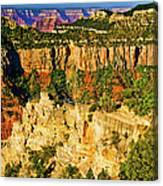 View From Angel Point  Canvas Print