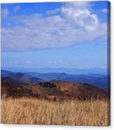 View From Black Balsam Knob Canvas Print