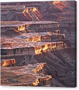 View From Grandview Point Canyonlands Canvas Print