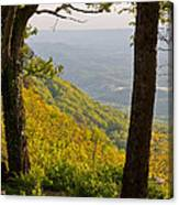 View From Lookout Mountain Canvas Print