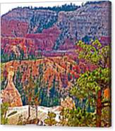 View From Queen's Garden Trail In Bryce Canyon National Park-utah Canvas Print