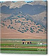 View From The Crops Canvas Print