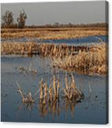 View From The Duck Blind Canvas Print