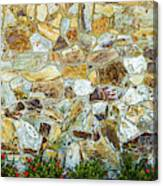 View Of A Stone Wall Canvas Print