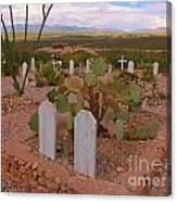 View Of Arizona From Boothill Cemetery Canvas Print