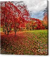 View Of Autumn Canvas Print