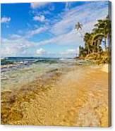 View Of Caribbean Coastline Canvas Print