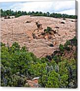 View Of Rock Dome Surface From Sandal Trail Across The Canyon In Navajo National Monument-arizona Canvas Print