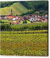 View Of Rodern From The Vineyards Of Alsace Canvas Print