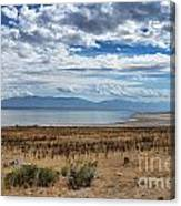 View Of Wasatch Range From Antelope Island Canvas Print