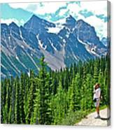 View On Trail To Lake Agnes In Banff Np-alberta Canvas Print