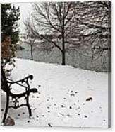 View The Lake  Canvas Print